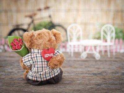 brown-bear-plush-toy-holding-red-rose-flower-1028729